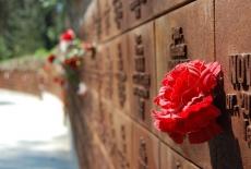 czerwony kwiat przyczepiony do ściany pamiatkowej